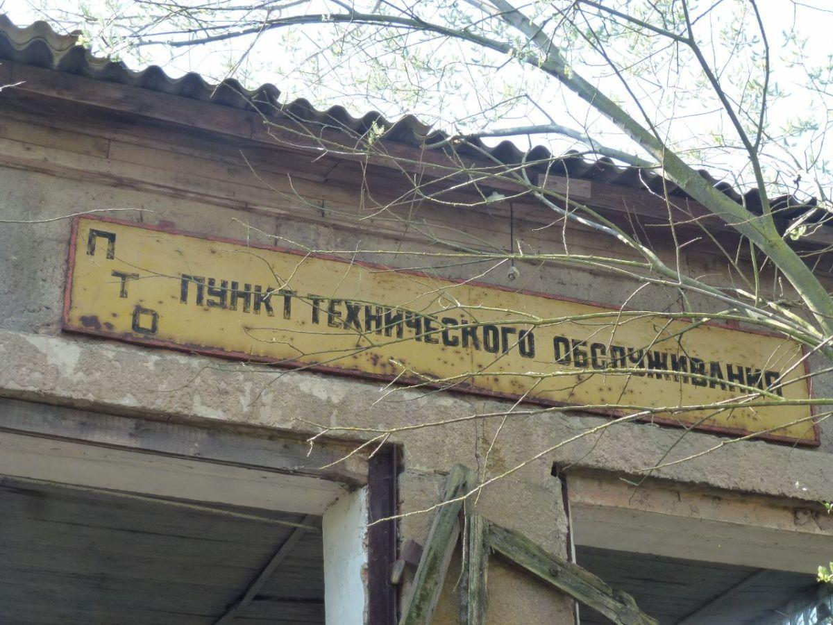 Alles blüht – russische Worte 70 Jahre nach Kriegsende inMagdeburg