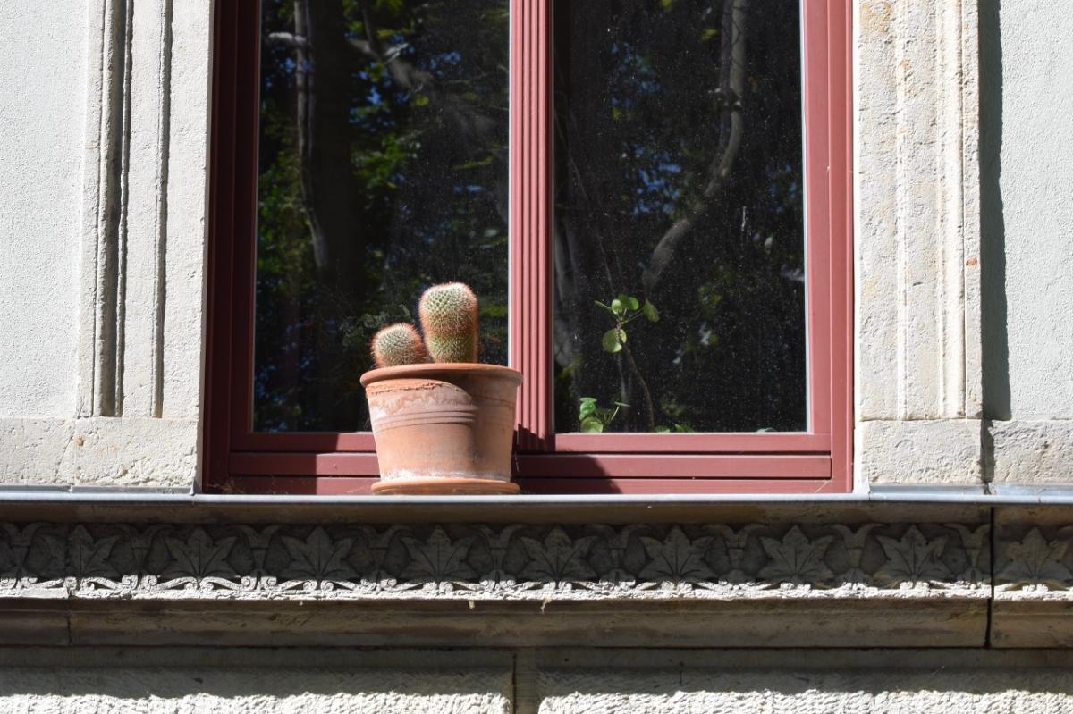 Fensterblicke #2