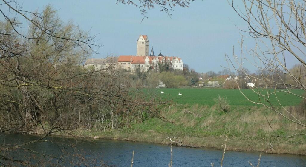 Salzländer Kulturstempel #40 SchlossPlözkau