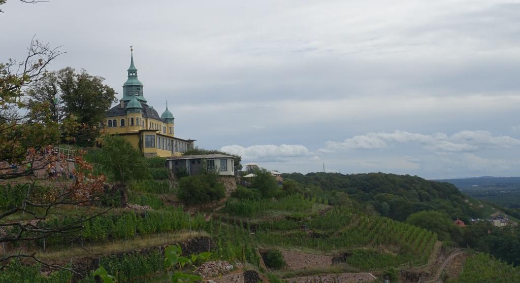 unsere Dresdner Bismarckturmschaukel
